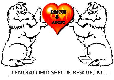 Other Sheltie Rescue Groups