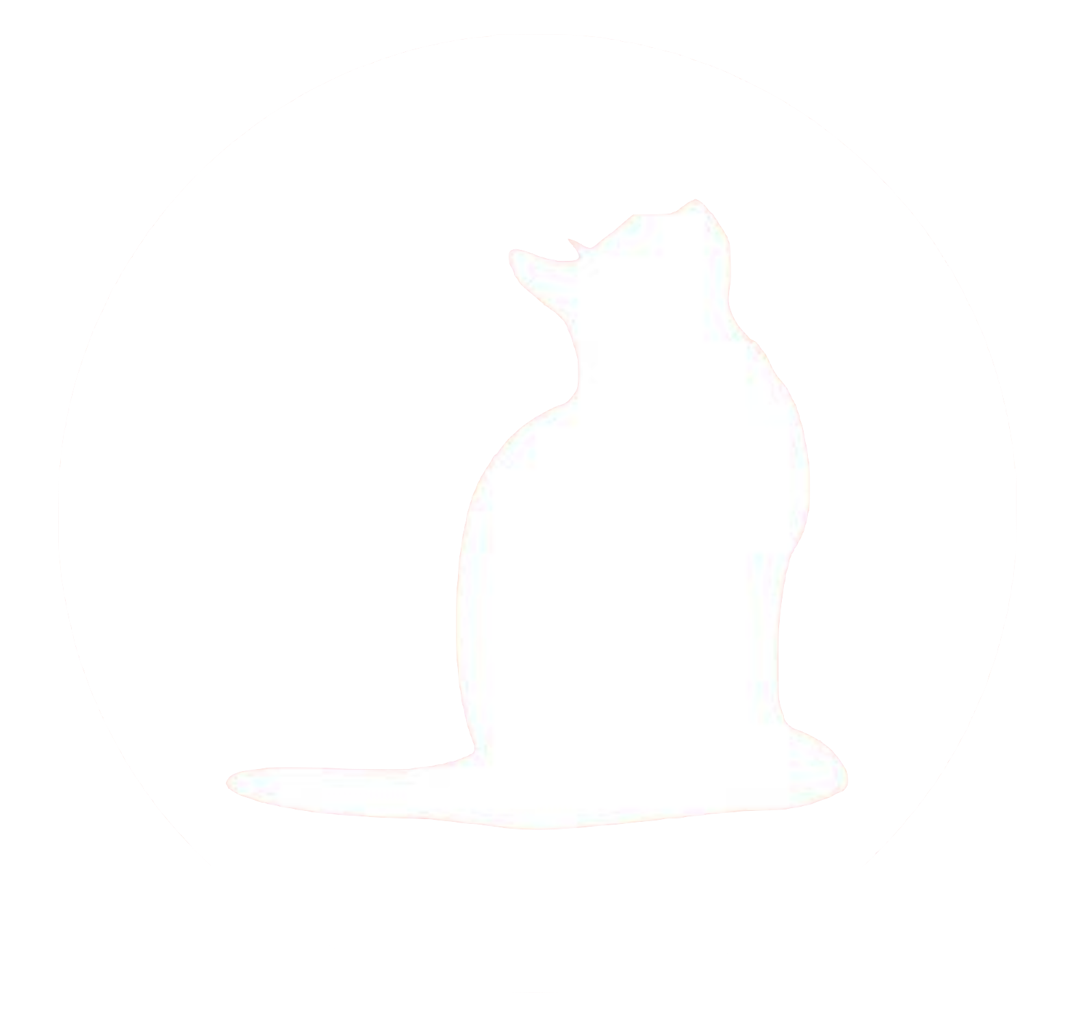 NYC Cat Coalition
