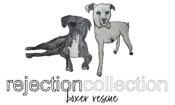 Rejection Coalition Boxer Rescue -  Logo