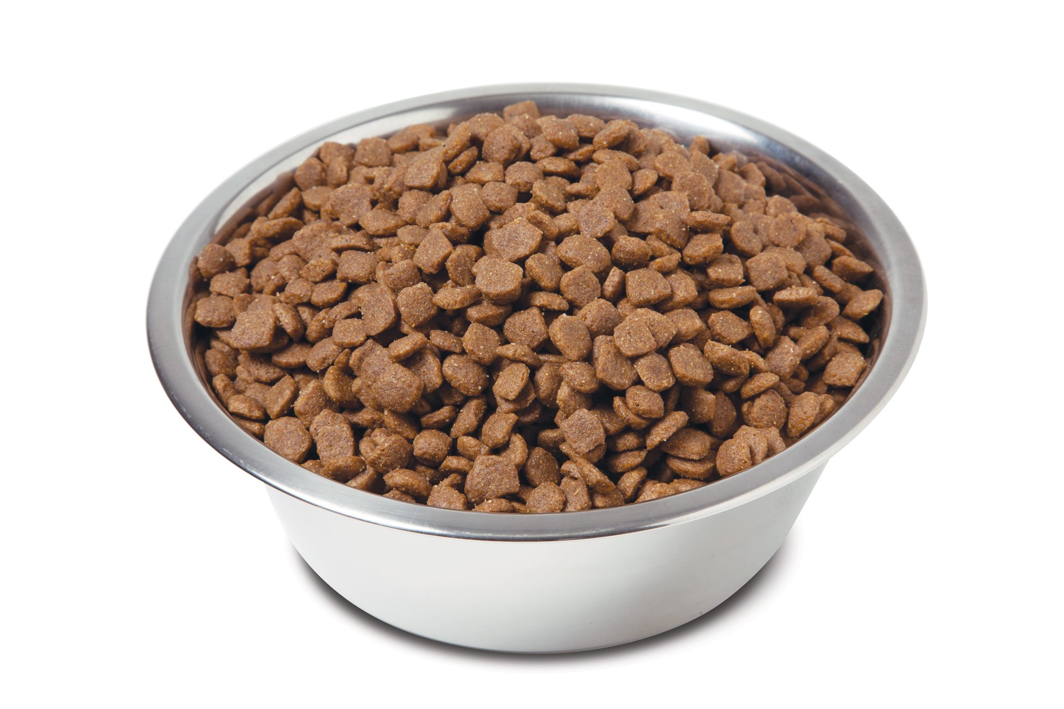 Free Dog Food Assistance