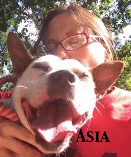 Donate Asia