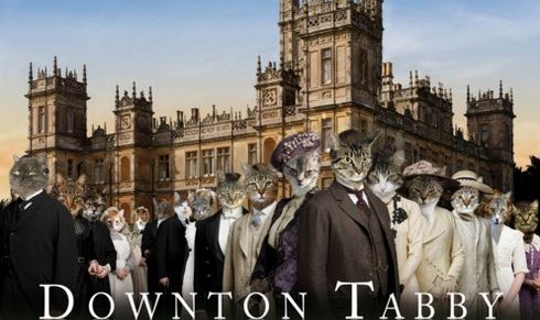 13th Street Cat Rescue  - Downton Tabby Tea