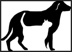 catdogbw