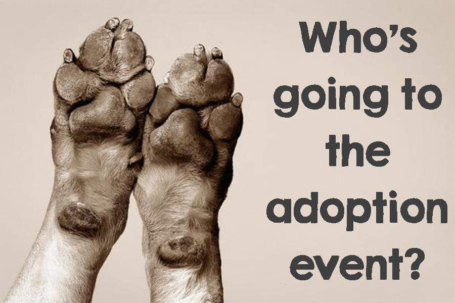 Who's Going To The Adoption Event