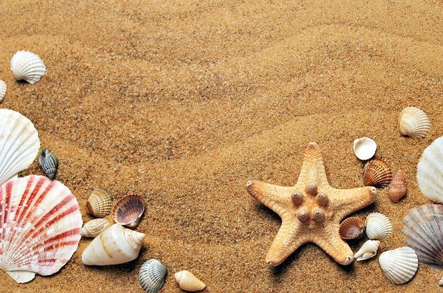 Learn how to create a great preschool beach theme
