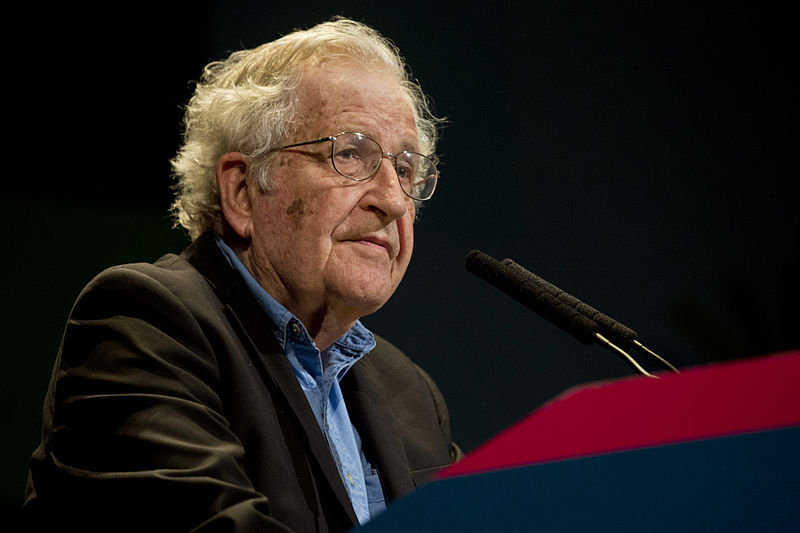 Noam Chomsky language theories explained