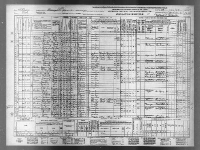 Population Schedule Form