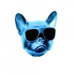 Amplificador dog azul