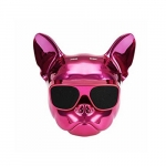 Amplificador dog pink