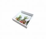 Bandeja Laqueada Branca Com Azulejo No Fundo Com Impressão Digital - Cacto - Pequena