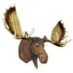 Cabeça de Moose (Alce) em Resina Oldway