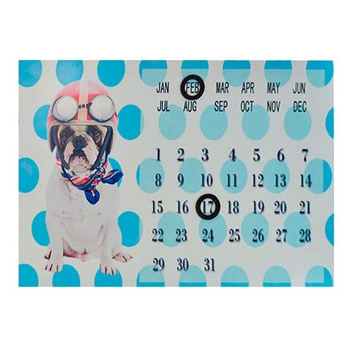 Calendário Cão Bruce com Óculos em Metal - 36x24 cm