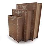 Conjunto Book Box Around The World