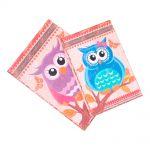 Conjunto Book Box Corujinhas Dreams - 2 peças - Coloridas em MDF - 30x22 cm