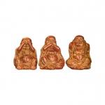 Conjunto Buda Sentidos P