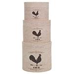 Conjunto de Caixas - 3 Peças - Cock Cream