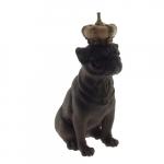Dog coroa bege