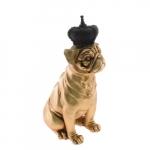 Dog coroa corpo dourado