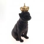 Dog coroa dourada