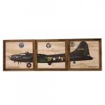 Kit quadros avião DFA