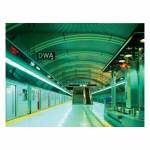 Papel de Parede Subway Wallness - Urban - 315x232 cm