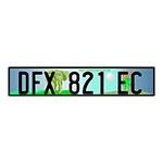 Placa de Carro Decorativa - Alto Relevo - África do Sul