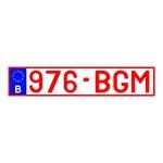Placa de Carro Decorativa - Alto Relevo - Bélgica - Europa