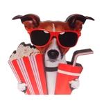 Placa Decorativa Dog Cine em Madeira