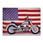 Placa Decorativa Harley USA Grande em Metal - 40x30cm