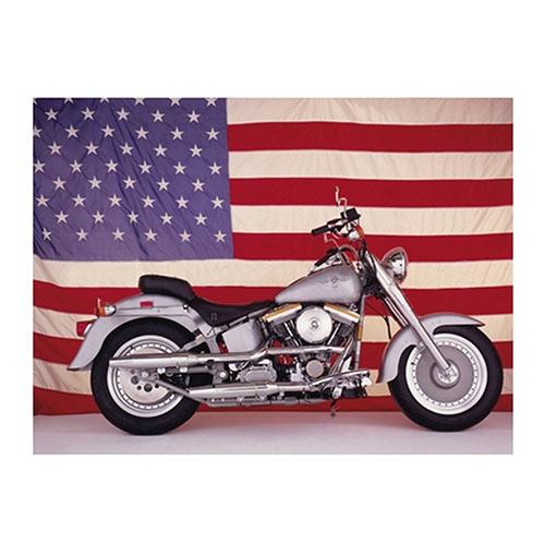 Placa Decorativa Harley USA Média em Metal - 30x20cm