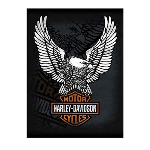 Placa Decorativa Harley-Davidson Grande em Metal - 40x30cm