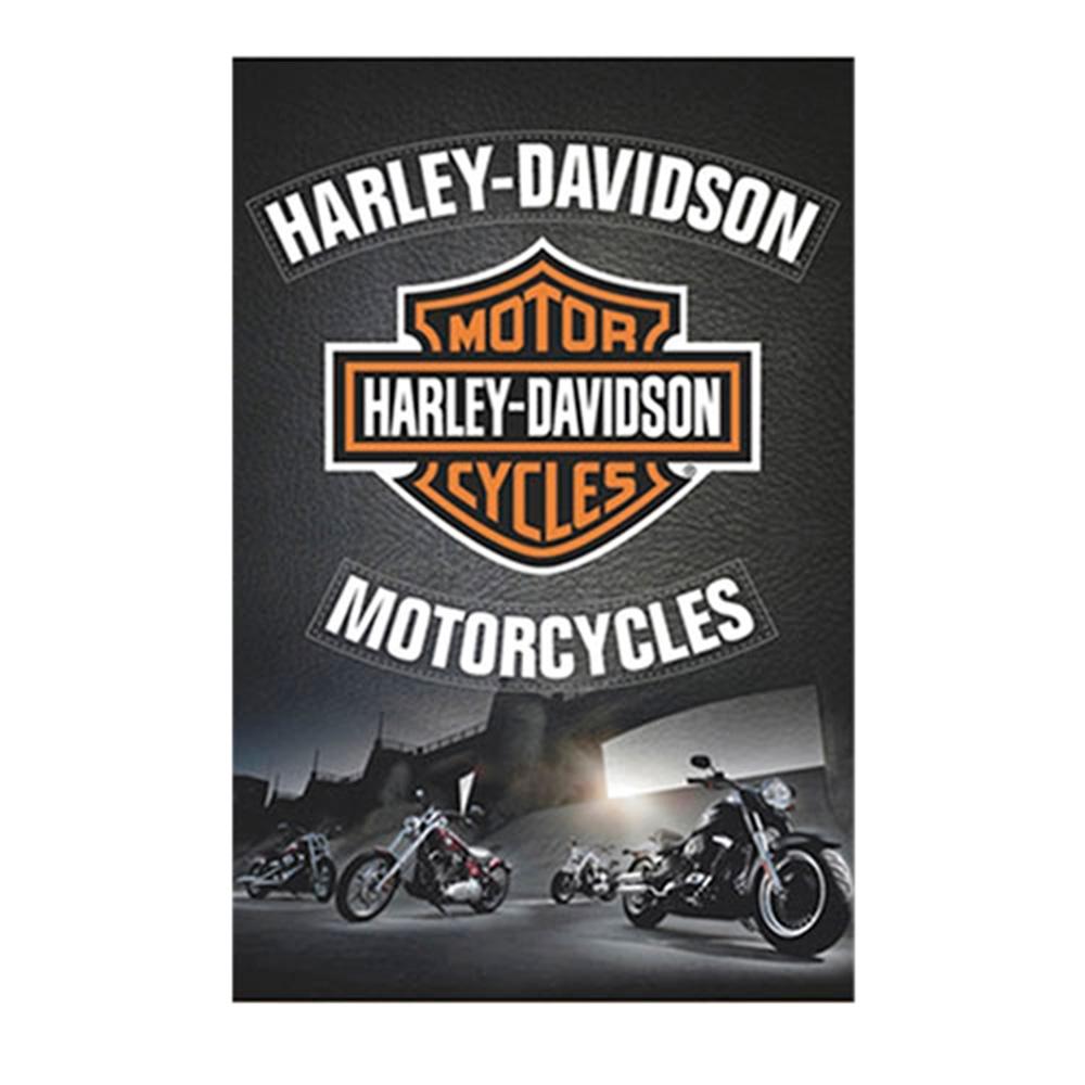 Placa Decorativa Harley-Davidson Motorcycles Grande em Metal - 40x30cm