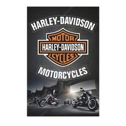 Placa Decorativa Harley-Davidson Motorcycles Grande