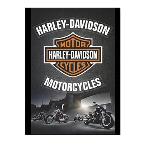 Placa Decorativa Harley-Davidson Motorcycles Média em Metal - 30x20cm