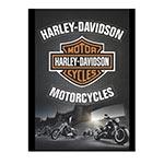 Placa Decorativa Harley-Davidson Motorcycles Média