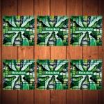 Porta-Copos Hei Hei Heineken Beer Verde - 6 Peças - em Vidro - 8,5x8,5 cm