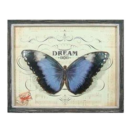 Quadro Borboleta Dream Vintage em Madeira - 51x41 cm