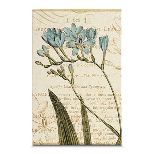 Quadro em Canvas Estudos da Flor Azul - 45x30 cm