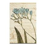Quadro em Canvas Estudos da Flor Azul