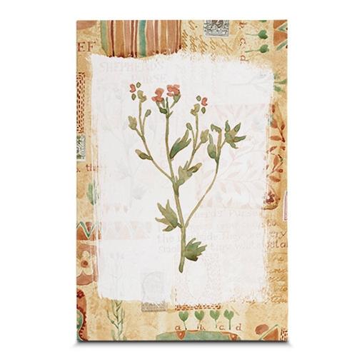 Quadro em Canvas Floral Botânico - 45x30 cm
