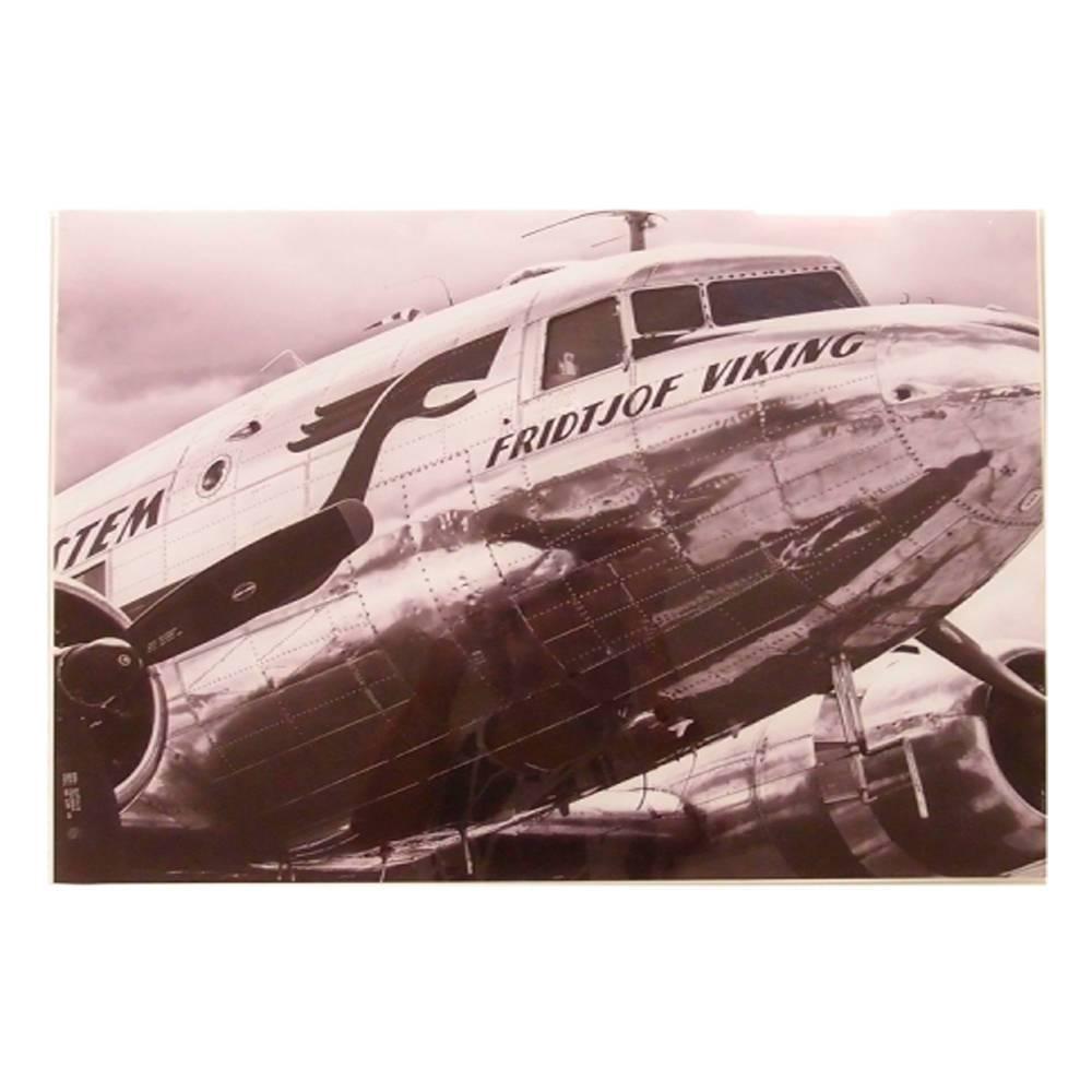 Quadro Decorativo Avião Frid Viking Preto e Branco em Vidro - 50x40 cm