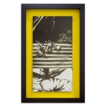 Quadro Decorativo Black And White Leaves I em Madeira
