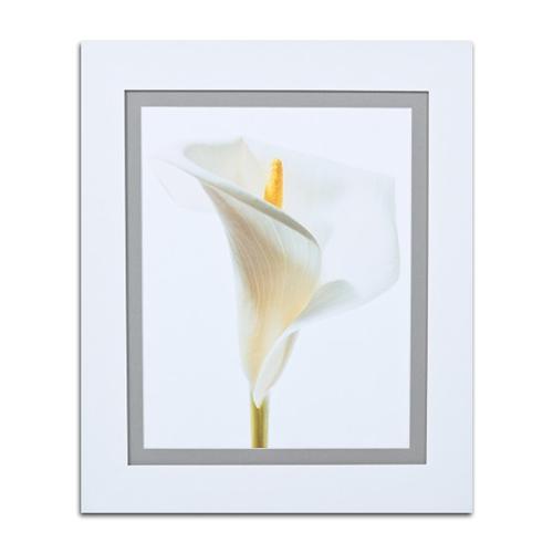 Quadro Decorativo Calla Branca em Madeira - 67x57 cm