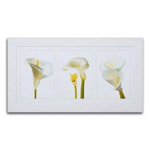 Quadro Decorativo Copo de Leite em Madeira - 113x63 cm