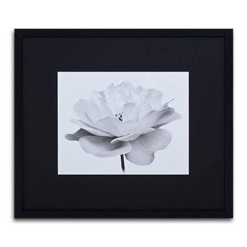 Quadro Decorativo Flor Branca em Madeira - 81x71 cm