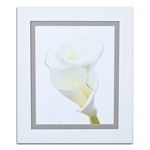 Quadro Decorativo Flor Única Branca em Madeira