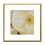 Quadro Decorativo Floral Branca II em Madeira Crua