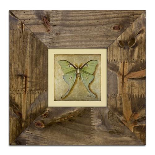 Quadro Decorativo Luna Moth em Madeira - 42x42 cm