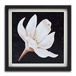 Quadro Decorativo Pétalas Brancas de Uma Flor em Madeira