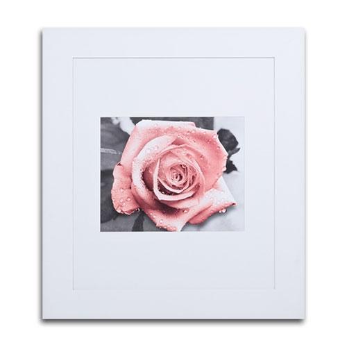 Quadro Decorativo Rosa com Gotas de Chuva em Madeira - 98x89 cm